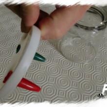 piège à planaires avec stylo et pot