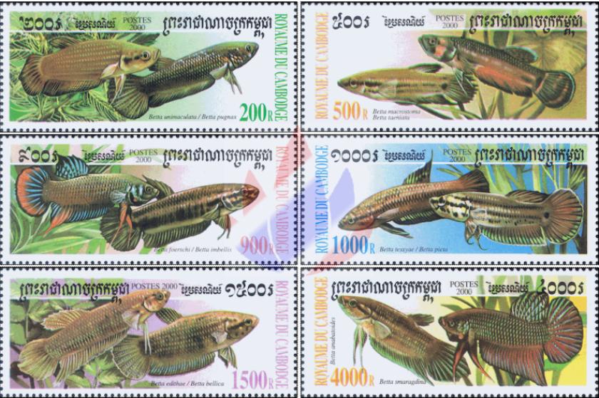 timbres betta