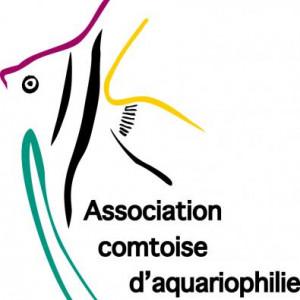 club aquariophilie Association Comtoise d'Aquariophilie