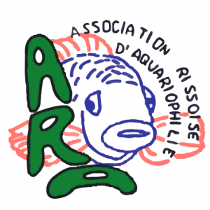 club aquariophilie ARA91