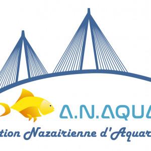 club aquariophilie A.naqua44  Association Nazairiénne d Aquariophilie