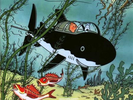 aquariophile Burdigala