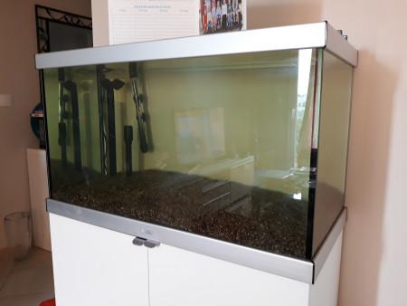 aquariophile jerome8234