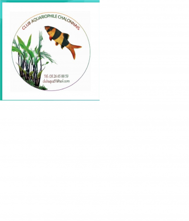 aquariophile club_aquariophile_chalonnais