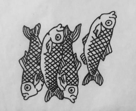 aquariophile Lele0808