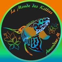aquariophile amandine-marcq
