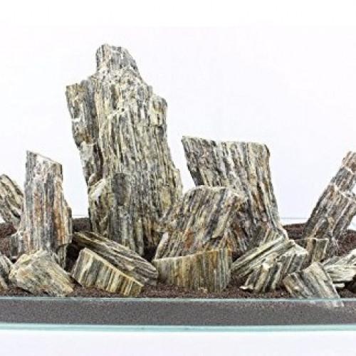 iwagumi roches pierres