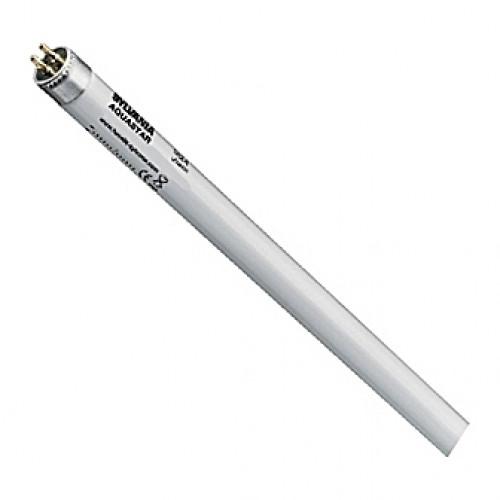 Tube néon T8 Sylvania AquaStar - 18W - 60cm