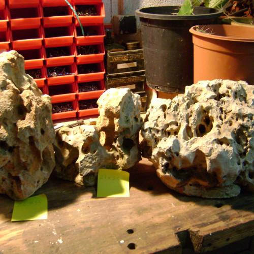Grosses pierres a trous pour aquarium a cichlidés ou autre