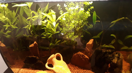 aquarium FLUVAL 57 litres