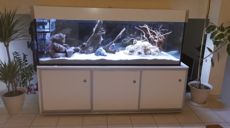 aquarium Aquarium communautaire