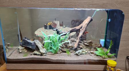 aquarium Communautaire