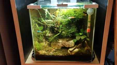 aquarium Nano 15L