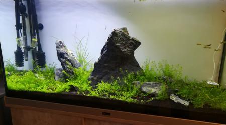 aquarium Le Grand RC