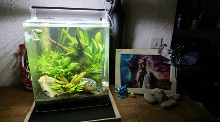 aquarium Nano cube Dennerle 30 l