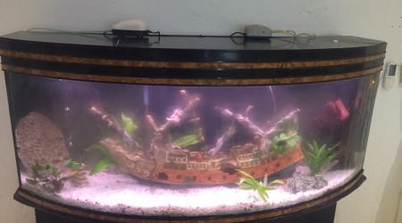 aquarium Héritage
