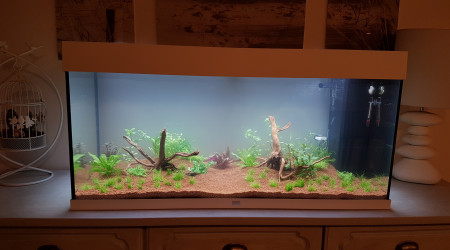 aquarium Rio led 180