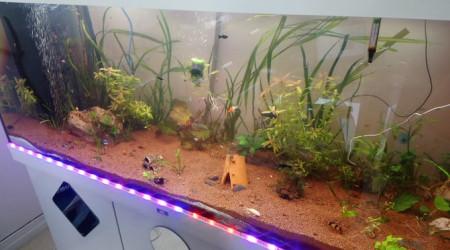 aquarium Rio 400