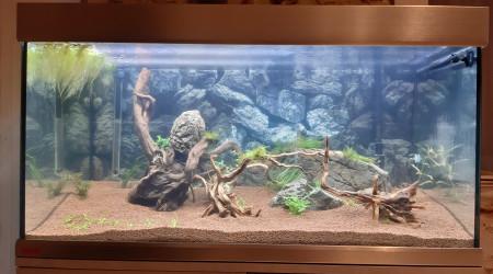 aquarium Proxima 250litres