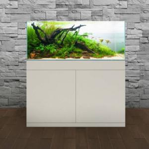 Acheter aquariums pas cher