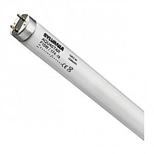 Tube néon T8 Sylvania AquaStar - 15W - 45cm