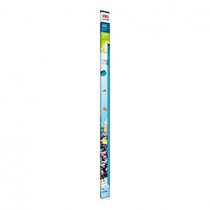 Tube néon T5 JUWEL HIGH LITE BLUE 54W - 1200mm