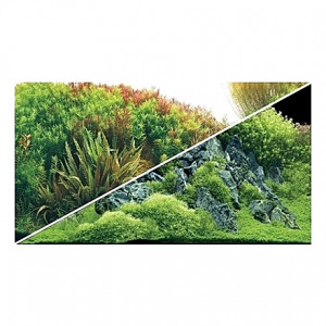 Poster HOBBY Planted River / Green Rocks 100x50cm