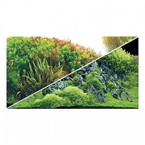 Poster HOBBY Planted River / Green Rocks 120x50cm