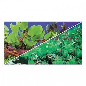 Poster HOBBY Plantes 1/5 120x50cm DF HOBBY