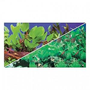 Poster HOBBY Plantes 60x30cm