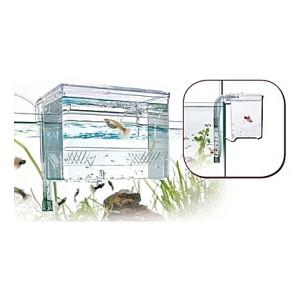 Pondoir externe Amtra/Wave Fish Hatchery - 1,2L