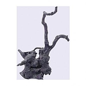 Bois flotté - 21x14x30cm
