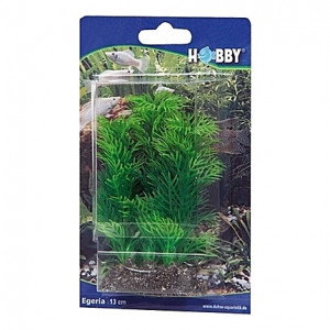 Plante artificielle Egeria 13cm
