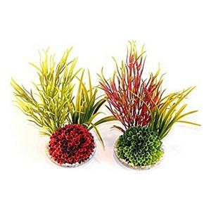 Îlots de plantes 20cm