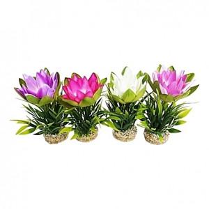 Fleurs de lotus 18cm