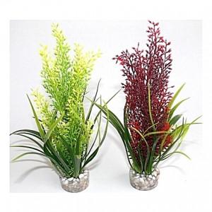 Plantes tropicales 20cm