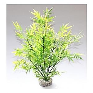 Bamboo 36cm