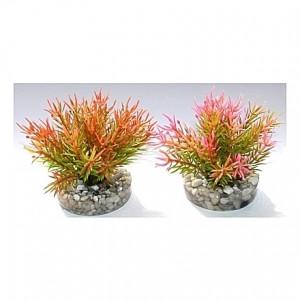 Petit buisson coloré 9cm