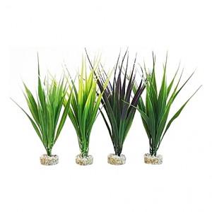 Oasis herbes 16cm