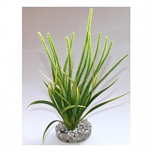 Plante élancée 21cm