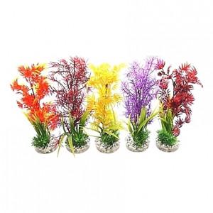 Cocktail de plantes colorées 25cm
