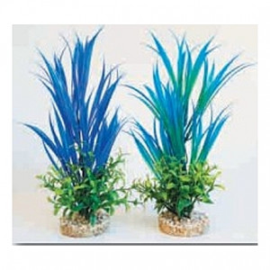 Plantes bleues 27cm