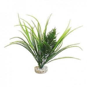 Plantes exotiques 30cm