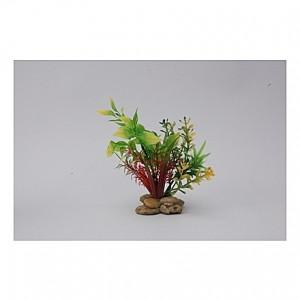 Assortiment de plantes 15cm