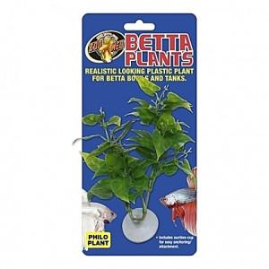 Plante philo sur ventouse