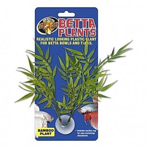 Plante bamboo sur ventouse