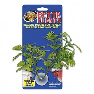 Plante longues feuilles sur ventouse