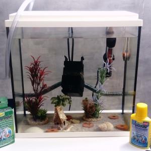 aquarium complet 20L