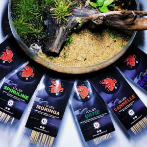 Lollies aquashrimp pour crevettes ( N°1 EN FRANCE DES SITES DE VENTES EN NOURRITURES ARTISANALE !)