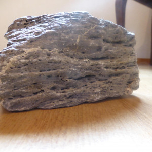 pierre grise